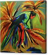 Fancy Dancer Canvas Print