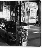 Fancy Pole Canvas Print