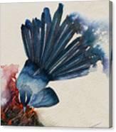 Fantail Flycatcher Canvas Print