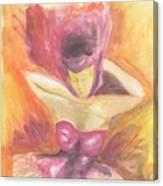 Fantasia De Mujer Canvas Print