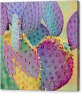 Fantasy Cactus Canvas Print