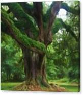 Fantasy Oak Canvas Print