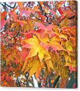 Fantasy Of Fall Canvas Print