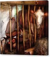 Farm - Cow - Milking Mabel Canvas Print