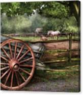 Farm - Horse - Grey Mare Canvas Print