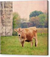 Farm Dreamscape Canvas Print