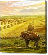Farm - Finland - Field Of Hope 1899 Canvas Print