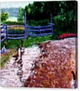 Farm Geese Canvas Print