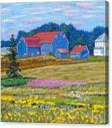 Farm On Prince Edward Island Canvas Print