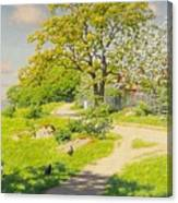 Farm Scene With Pecking Chickens Canvas Print