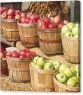 Farmer's Market Apples Canvas Print