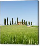 Farmhouse With Cypress Trees And Crops In Tuscany Canvas Print