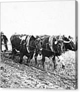 Farming: Ploughing, C1930 Canvas Print