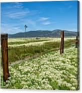 Farmland Scenery Canvas Print