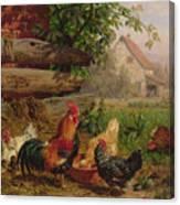 Farmyard Chickens Canvas Print