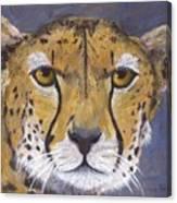 Fast Cat Canvas Print