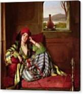 Favourite Of The Harem Canvas Print