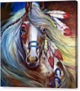 Fearless Indian War Horse Canvas Print