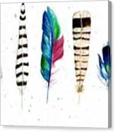 Feather Study Canvas Print