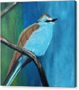 Feathered Friends Second In Series Canvas Print