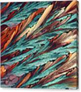 Feathers Of Crystal 2 Canvas Print