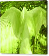 Feathers Of Light - Green Canvas Print