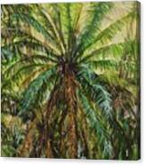 Federico Palm Canvas Print
