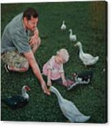 Feeding Ducks With Daddy Canvas Print