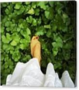 Feet Around The World #3 Canvas Print