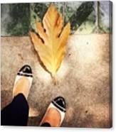 Feet Around The World #30 Canvas Print