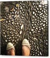 Feet Around The World #32 Canvas Print