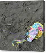 Feliz Cumpleanos Mylar On The Beach Canvas Print