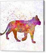 Female Lion 01 In Watercolor Canvas Print