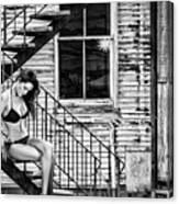 Feminine Stairwell Canvas Print