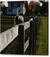 Fence Line Canvas Print