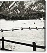 Fence Lines And Flatirons Canvas Print