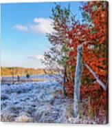 Fenced Autumn Canvas Print