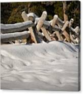Fenced In White Canvas Print