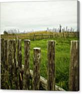 Fences In A Stormy Light Canvas Print