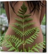 Fern And Woman Canvas Print