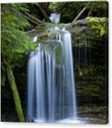 Fern Falls Canvas Print