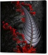 Silver Fern  Canvas Print