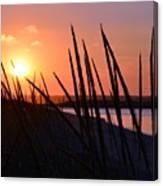 Ferry Beach Canvas Print
