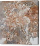 Festering  N003 Canvas Print