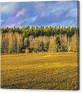 Field And Sky.  Canvas Print