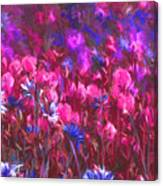 Field Of Dreams Abstract Canvas Print