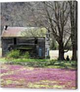 Field Of Lavender  Canvas Print
