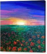 Field Of Light Canvas Print