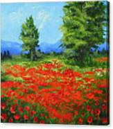 Field Of Poppies IIi Canvas Print