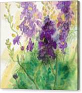 Field Of Purple Canvas Print